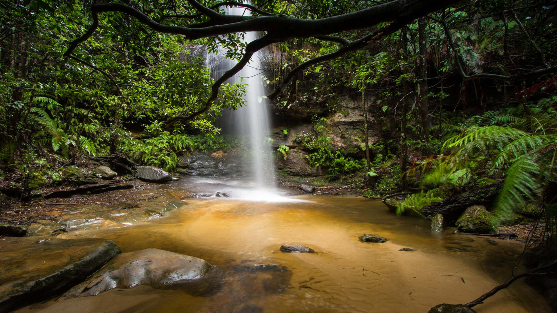 Beautiful Waterfall Deep In The Jungle Adeline Falls South
