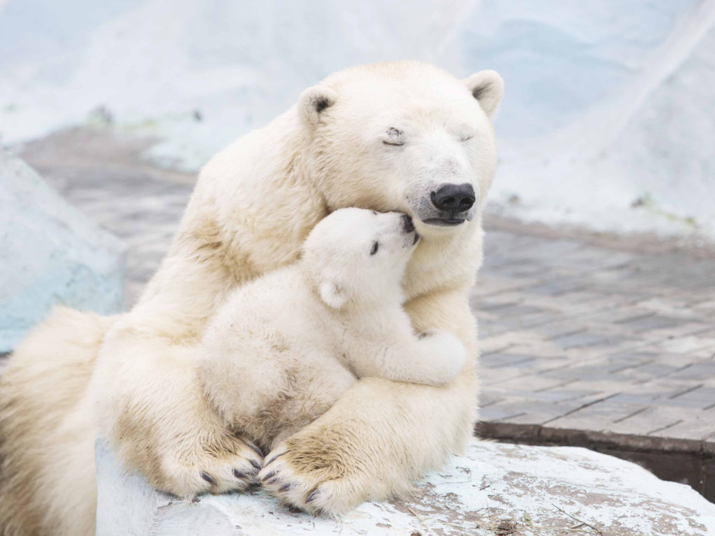 Ultimate Love Between Mother And Daughter Wallpapers13