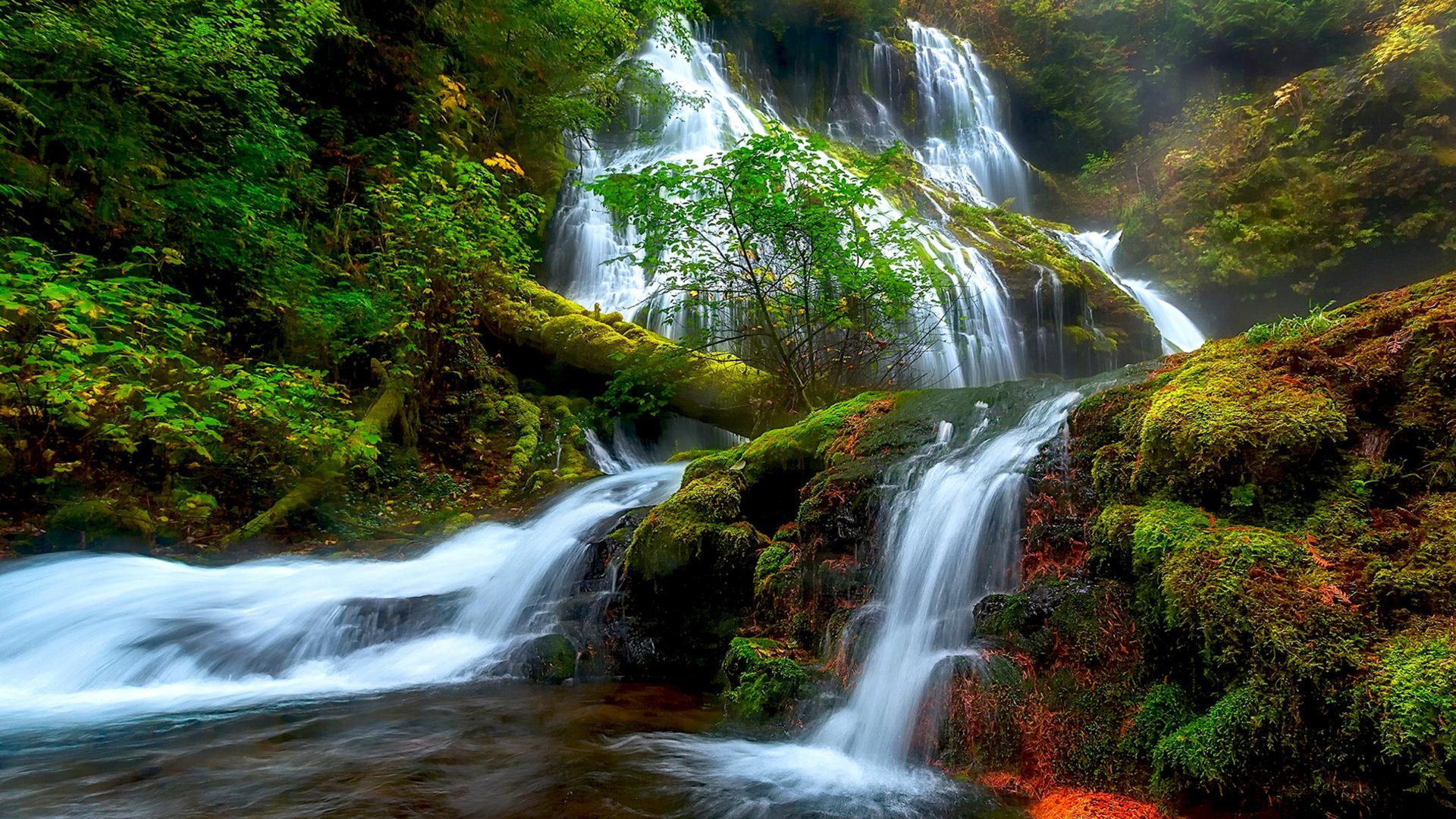 Natural Beauty Panther Creek Falls Columbia River District