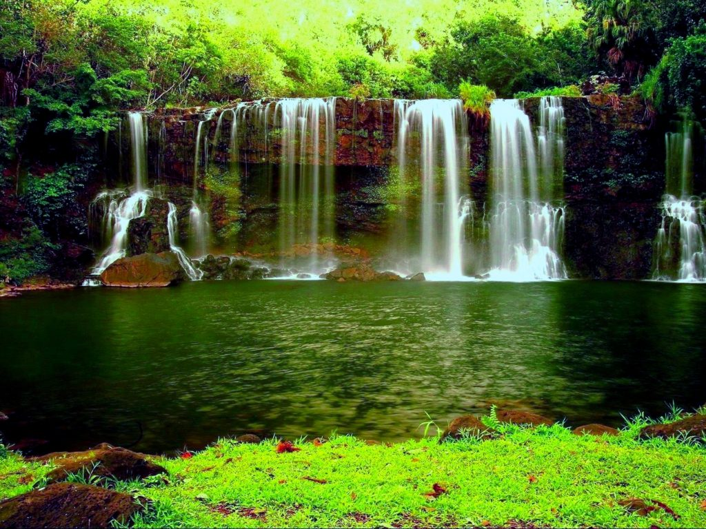 Waterfall In The Thick Green Forest River Pond Weed Hd Wallpapers For Desktop 1920x1200