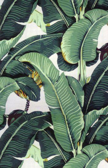 Download Tropical Leaf Wallpaper Gallery