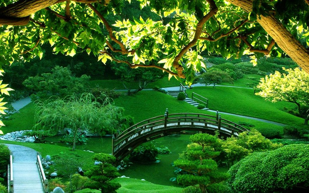 green garden images in hd adsleaf com