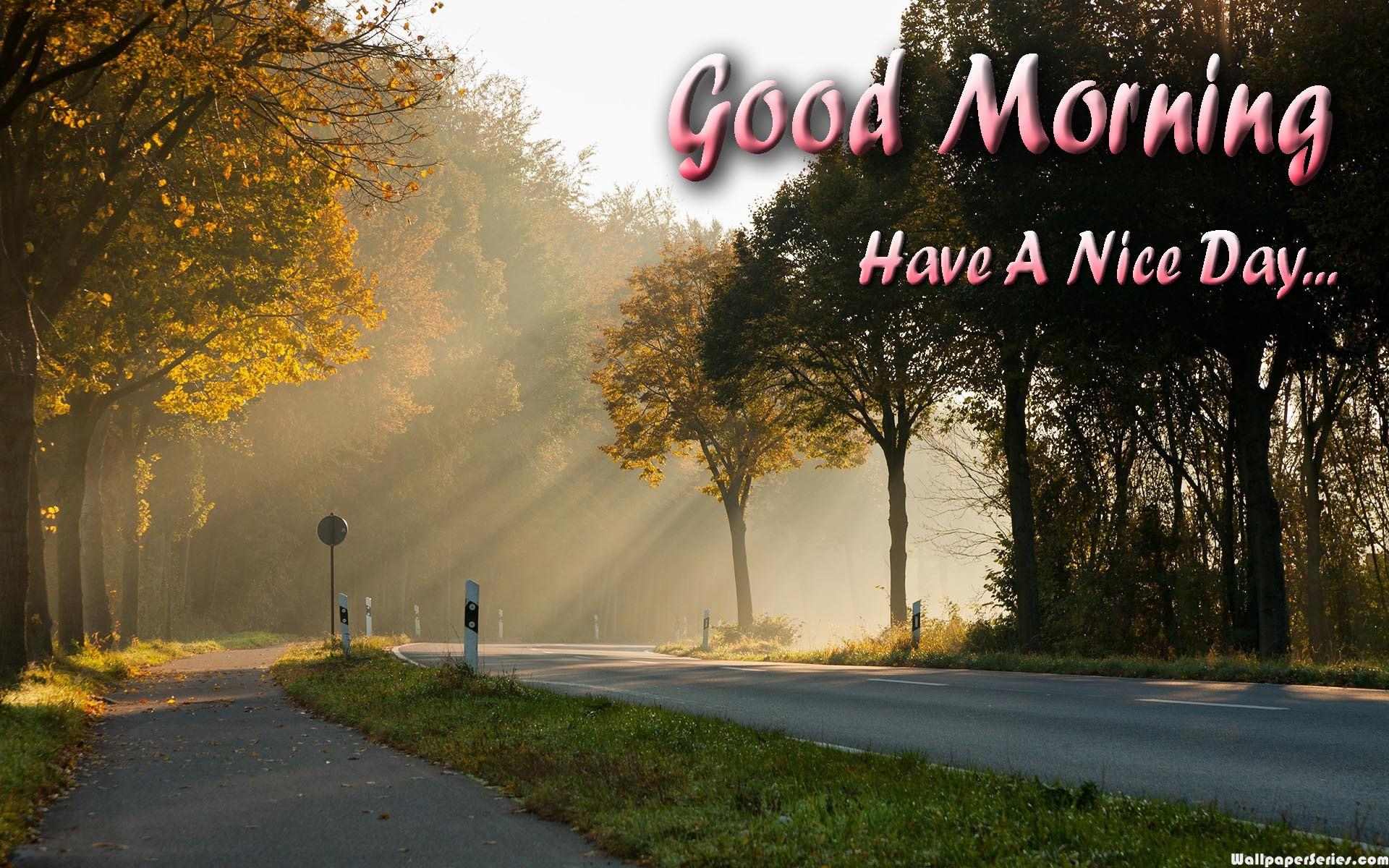 Hd Lovely Good Morning Have A Nice Day Wallpaper Beautiful Good Morning Have A Nice Day 1920x1200 Download Hd Wallpaper Wallpapertip