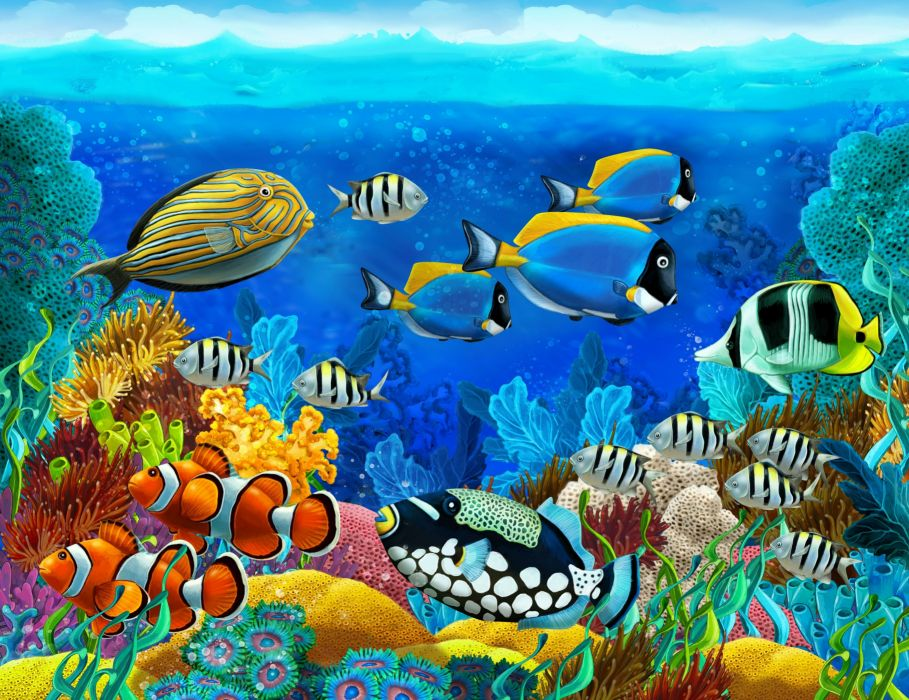 Giant sea bass are also the largest carnivores in the kelp forests of southern california. Sea Seabed Fish Corals Underwater Ocean Tropical G Wallpaper 4000x3082 282334 Wallpaperup