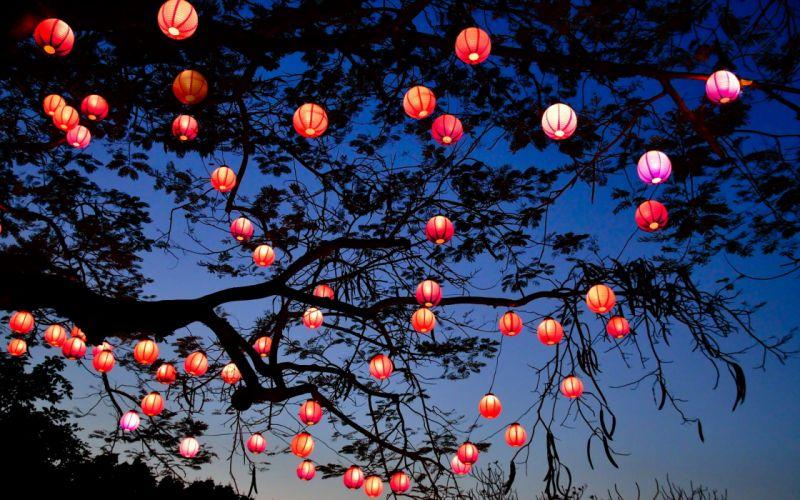Night Lights Tree Lantern Lamp Bokeh Wallpaper 2560x1600