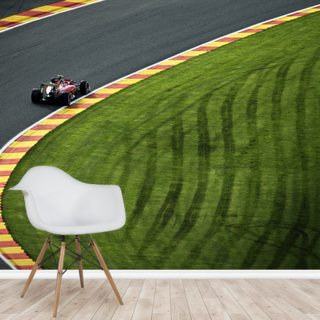 Formula 1 By Darren Heath Wallsauce UK