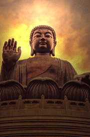 lord buddha hd wallpapers for android bedwalls co