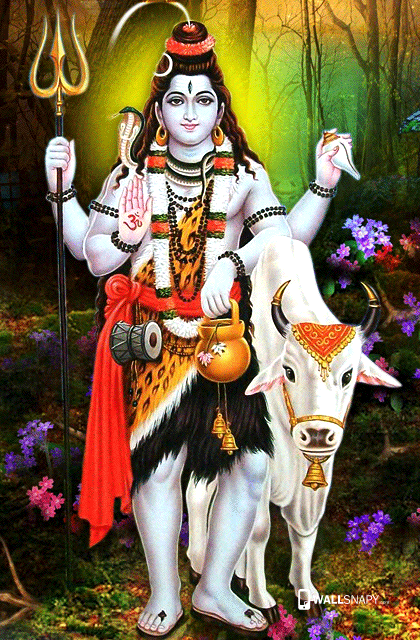 God Siva With Cow Hd Images Wallsnapy