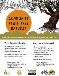 Community Fruit Tree Harvest