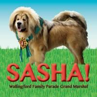 Grand Marshal Sasha & the Future of the Family Parade