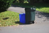 Free Extra Yard Waste Collection Through November 30