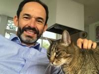 Catnapper Update