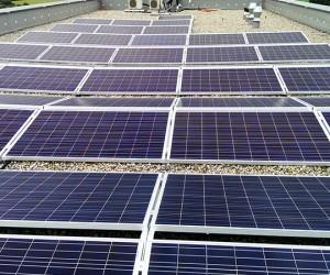 WALTER-konzept-WALTER-solar-MaxWildBerkheim