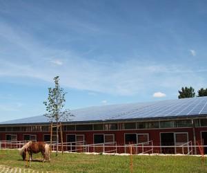 WALTER-konzept-WALTER-solar-ReitanlageWalter3
