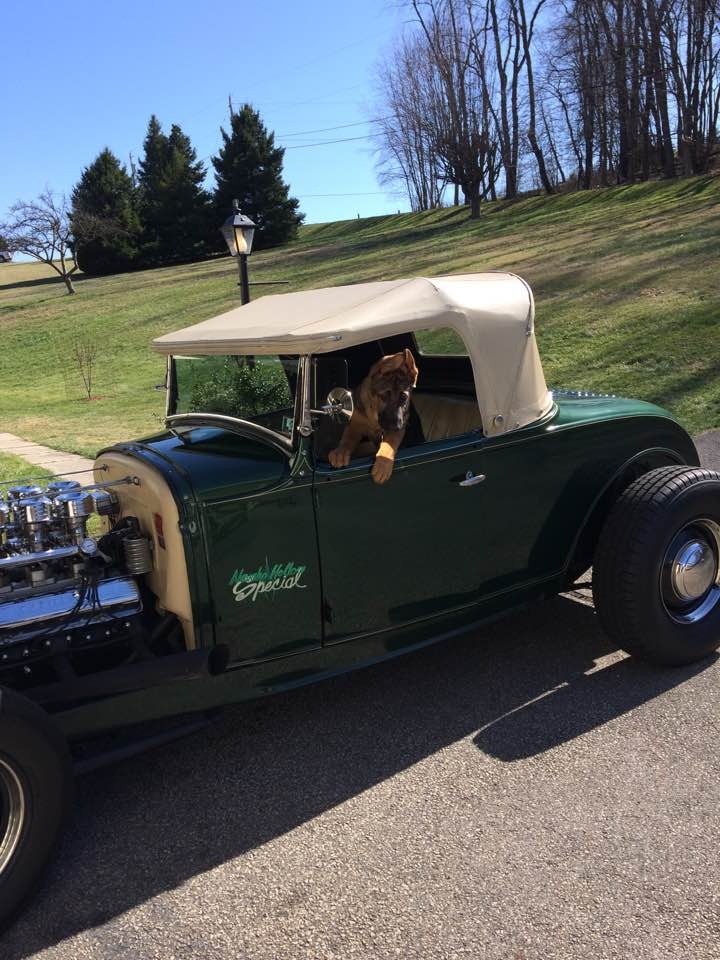 Garbo lives in Pittsburgh Pennsylvania with his new owner Gary T.  He is a great dog with a amazing new owner!!!!