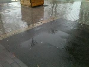 queens arms puddles