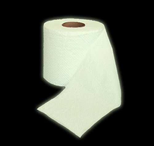 https://i1.wp.com/www.walyou.com/blog/wp-content/uploads/2009/08/glow-in-the-dark-toilet-paper-is-a-butt-saver1.jpg