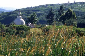 The stupa overlooking the valley.