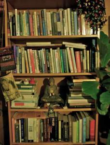 Bookshelves full of them — all published.