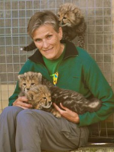 Vicki Gutgesell with the cheetah cubs she helped raise.