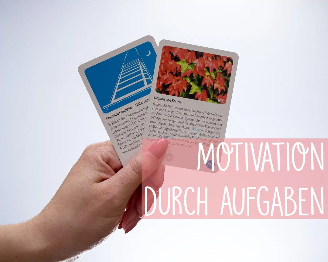 See the igger Picture Aufgabe Motivation Froschperspektive