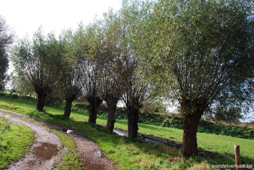 oude kalevallei