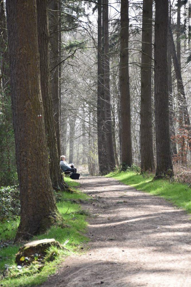 GR5A Abele-Roesbrugge