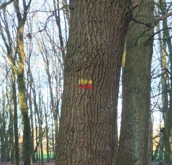 De geel rode markering
