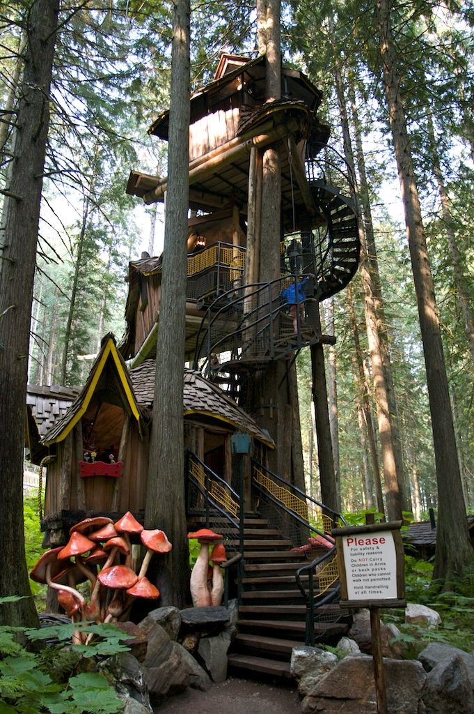 These Are The Best Treehouses Around The World