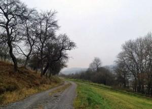 Weg nach Altkrautheim