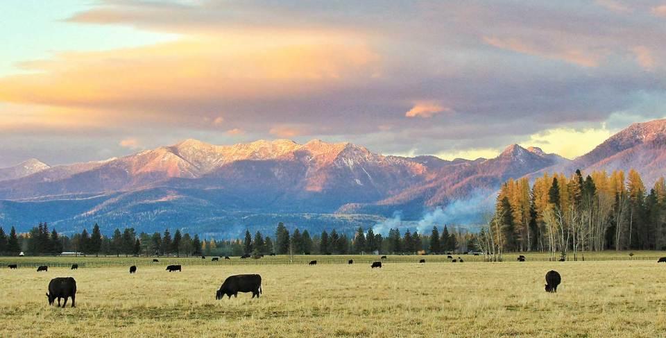 Montana-Ranch-Evening_Fall