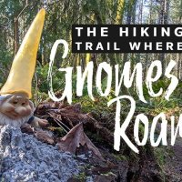 The PNW Hiking Trail where Gnomes Roam - Seattle Day Trips