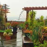 Pike Place Market's Secret Garden