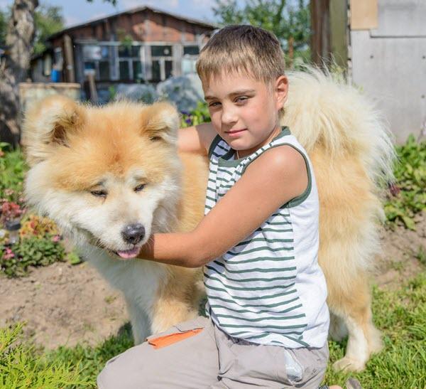 Cute-Akita-and-a-kid
