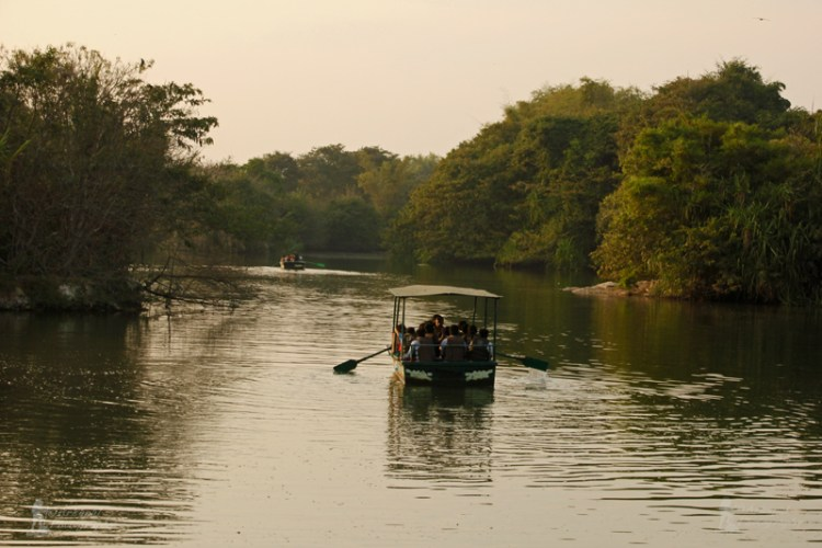 Boating on the Kaveri River at dusk