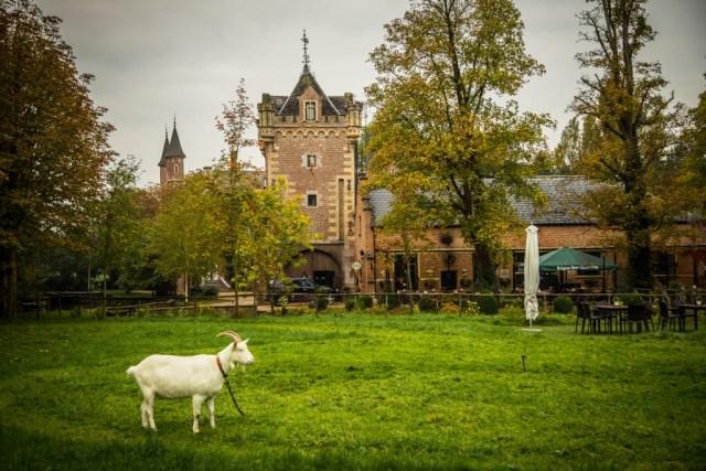 Sint-Truiden[BLOG]-4