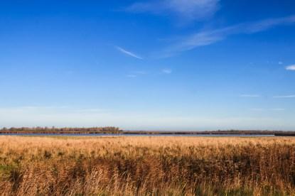 Lauwersmeer Wandeling-2
