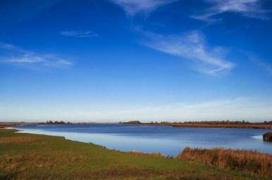 Lauwersmeer Wandeling-6