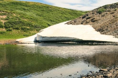 Canada - Eenvoudige hikes - Wilcox Pass-2