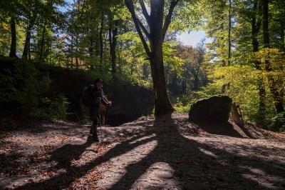 Mullerthal Trail-14