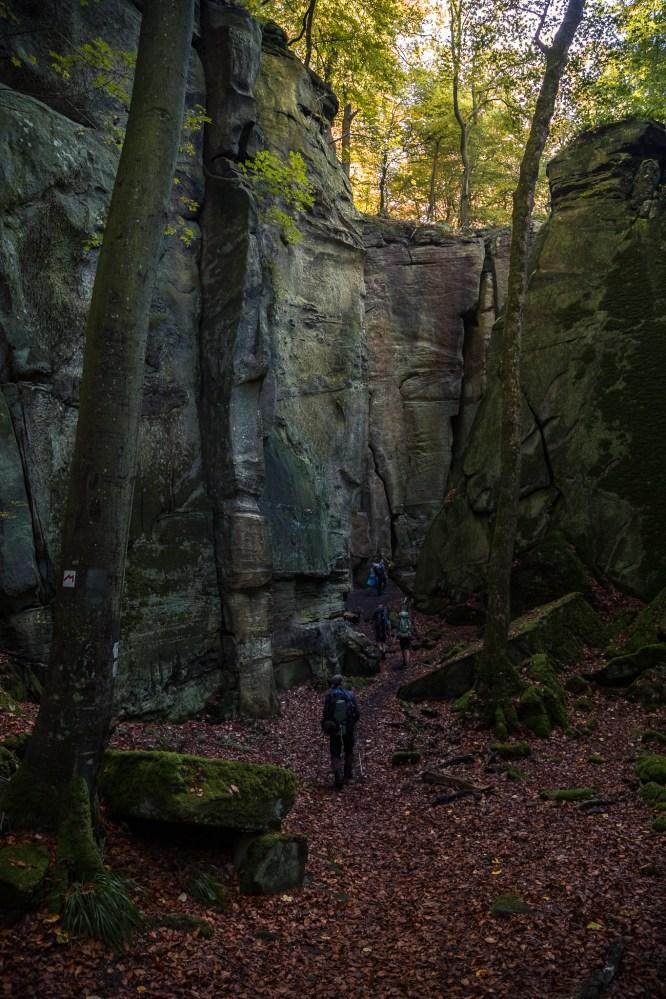 Mullerthal Trail-17