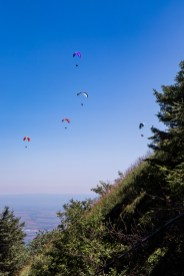 Mt Dearo