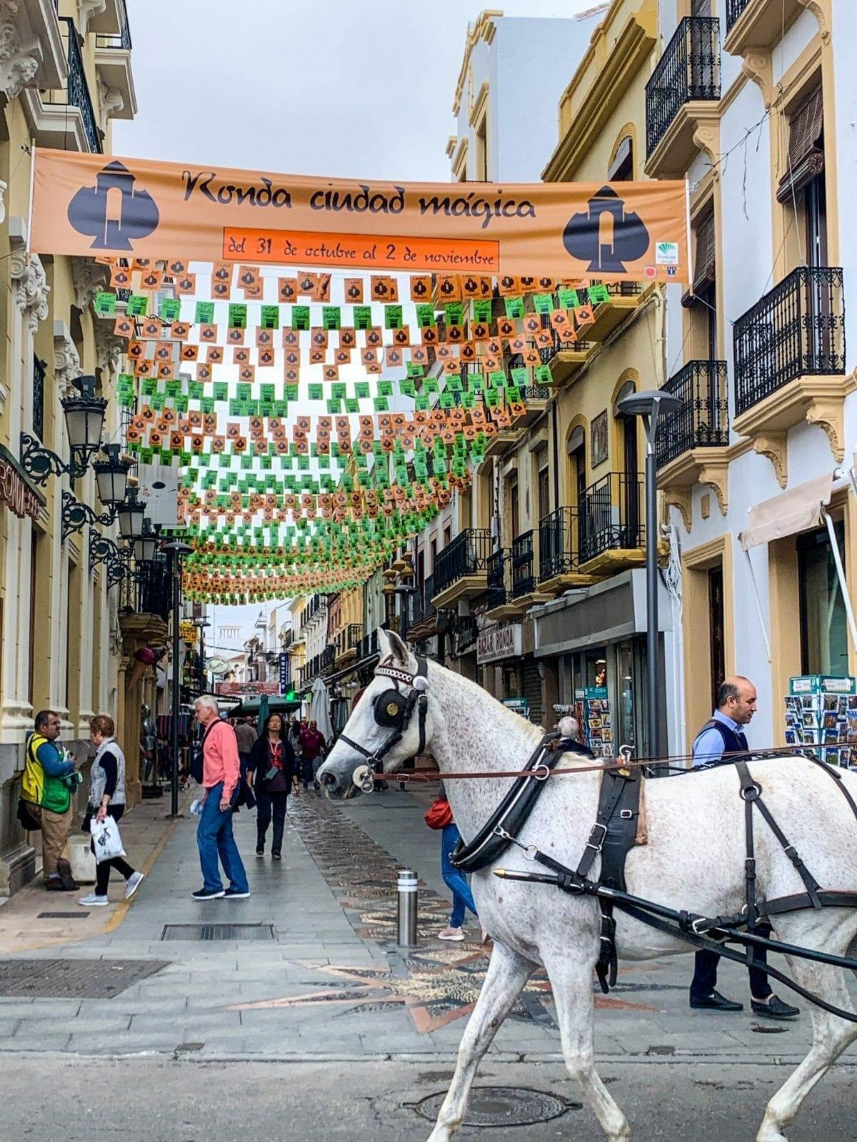 Carriage ride anyone? Ronda Spain