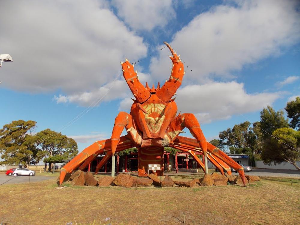 Giant Lobster, Australia