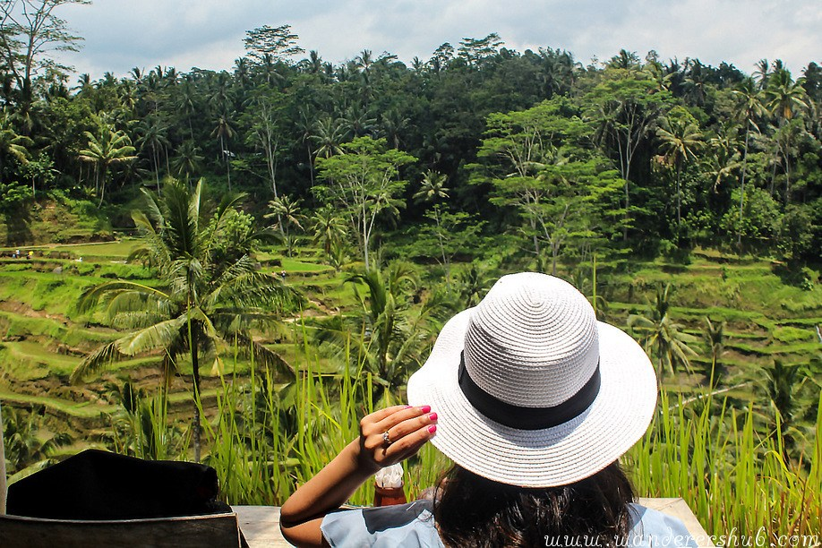 A Day at Tegalalang Rice Terrace Bali: In the Realm of Dreams