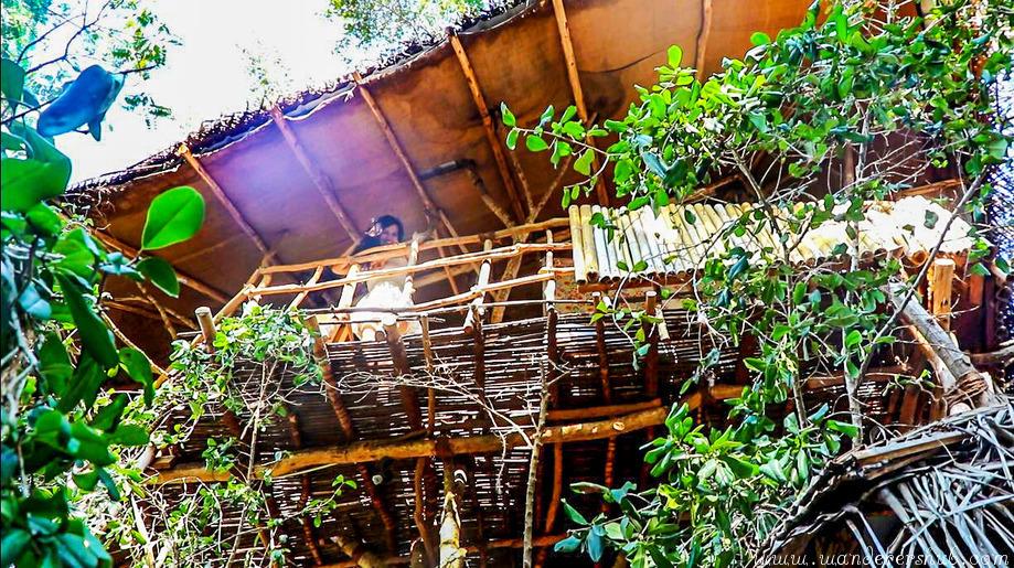 Enjoying in treehouse