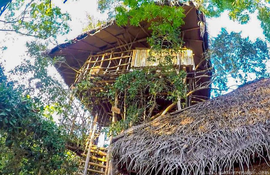 srilankan treehouse