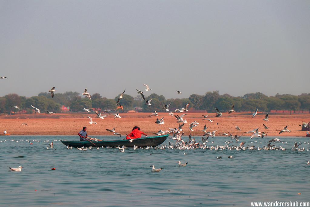 things to do in Varanasi India