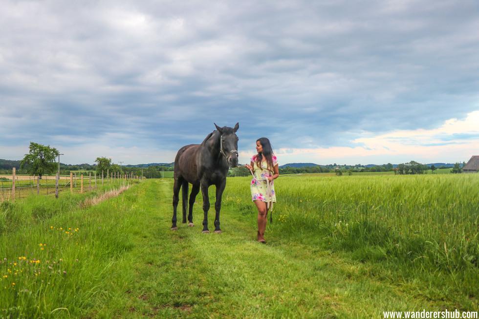 horse riding bavaria
