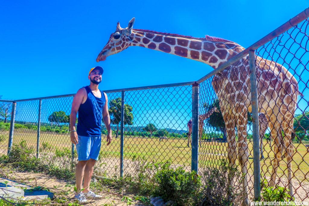 Visit to Calauit Safari Park